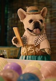 サムネめちゃ犬屋台.png
